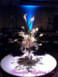 Simply amaze your guest with Beautiful Lighting for Brides table